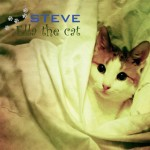 Ella the cat by Steve
